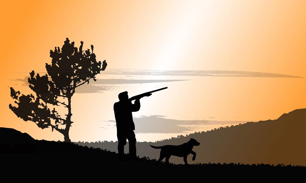 hunter-and-dog
